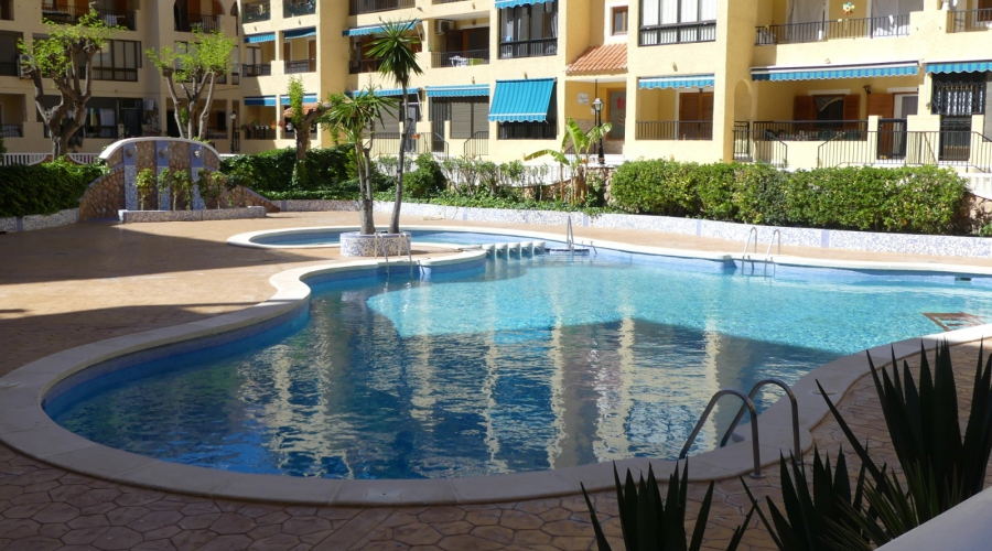 Apartment/Flat - ShortTime/Long time Rental - La Mata - La Mata